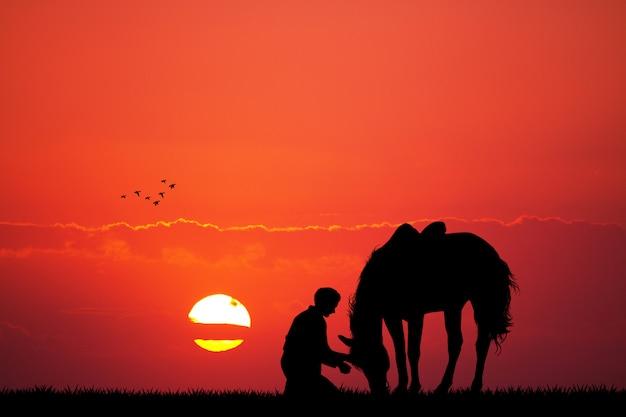 Silhouette homme et cheval au coucher du soleil Photo Premium