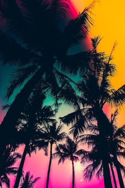 Silhouette de palmiers avec un ciel coloré Photo gratuit