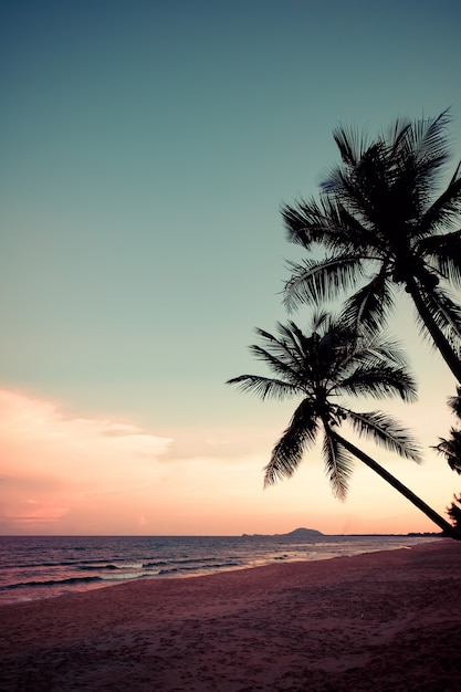 Silhouette de plage tropicale au crépuscule du coucher du soleil Photo Premium