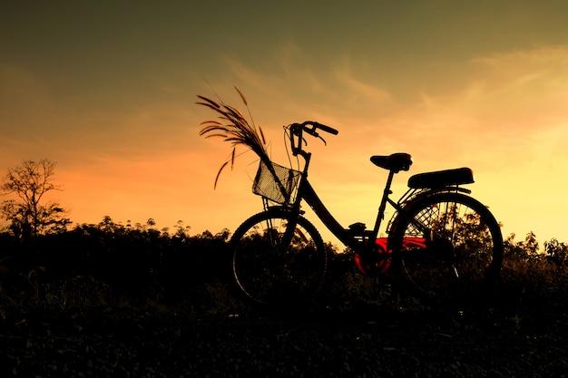 Silhouette, de, vélo, et, herbe, fleur, à, ciel bleu, dans, nature, paysage, vélo, sur, coucher soleil Photo Premium