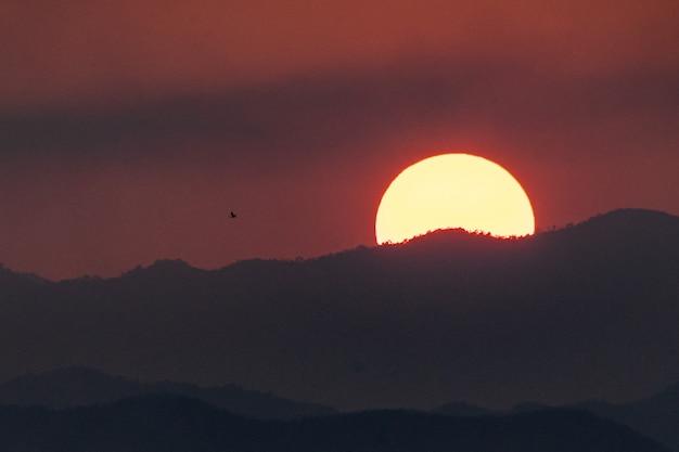Silhouette de vol d'oiseau et paysage de montagne sur coucher de soleil. Photo Premium