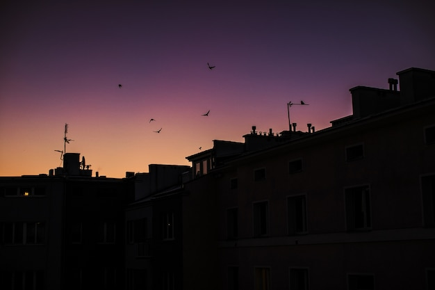 Silhouettes Des Bâtiments Avec Le Ciel Coucher De Soleil Violet Photo gratuit