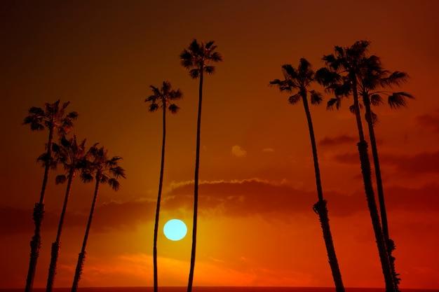 Silohuette ciel coucher de soleil de californie Photo Premium