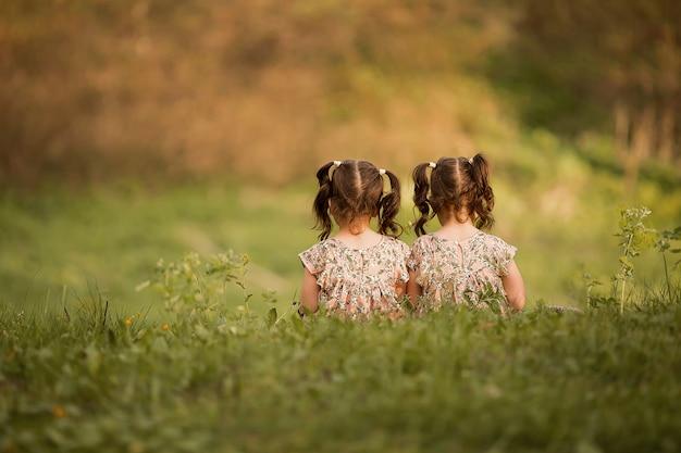 Les sœurs s'assoient devant le spectateur. gémeaux jouant dans la nature. les petites filles jouent dans la nature. filles avec des queues de cheval sont assis sur l'herbe Photo Premium
