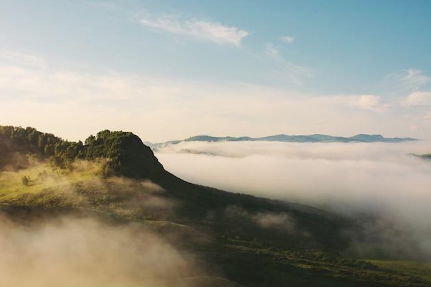 Sommet De Montagne Avec Forêt Au-dessus D'un épais Brouillard. Brume Dans Les Montagnes Au Soleil. Paysage Atmosphérique De Belle Nature Majestueuse. Photo Premium