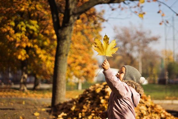 Souriant enfant avec bouquet de feuilles d'érable jaune en automne parc Photo Premium