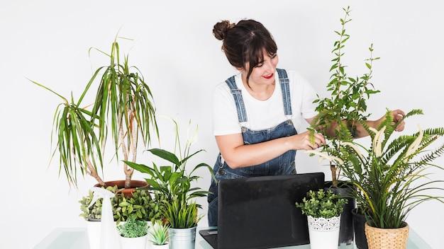 Souriant fleuriste femme examinant des plantes en pot avec ordinateur portable sur le bureau Photo gratuit