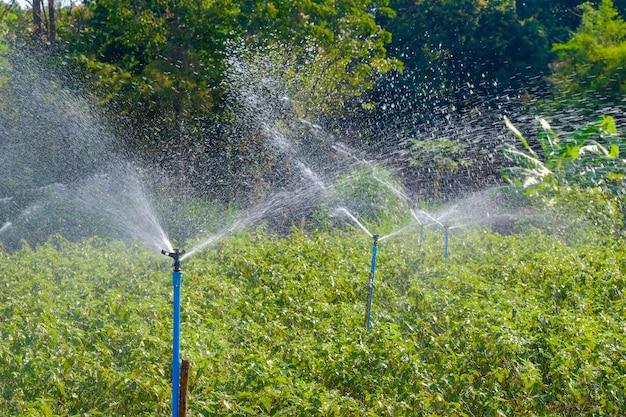 Springer en plastique arrosant les arbres dans le jardin Photo Premium