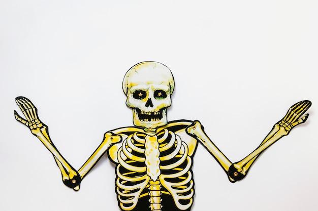 Squelette en carton sur fond blanc Photo gratuit
