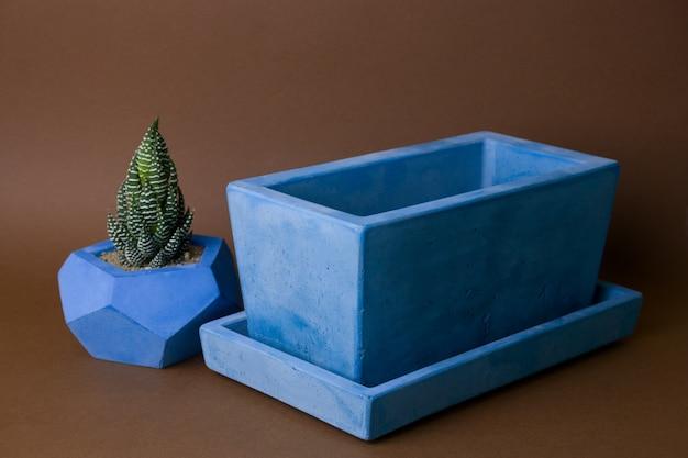 Succulentes en pot dans un pot en béton peint sur fond marron Photo Premium