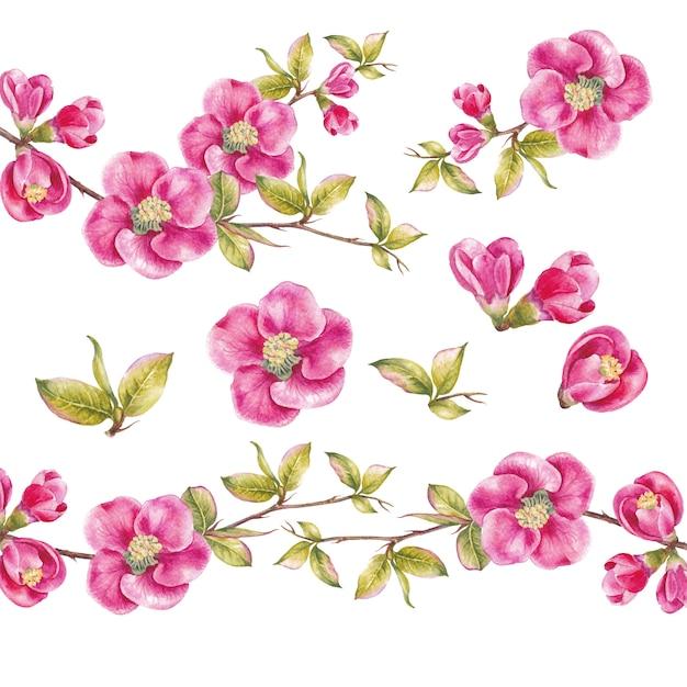 Superbe collection de fleurs de printemps. Photo Premium
