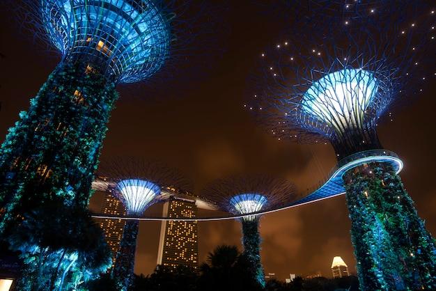 Supertree garden la nuit à garden by the bay, singapour Photo Premium