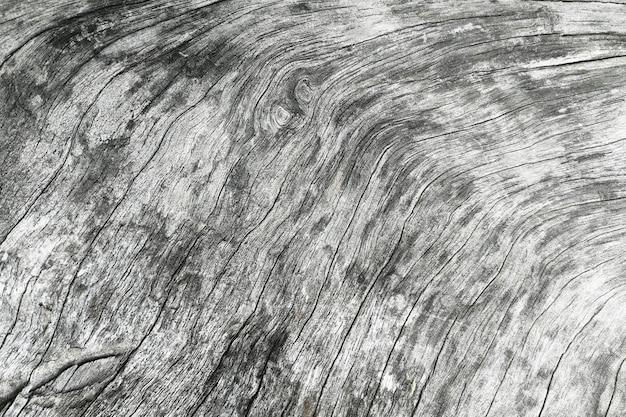 Surface bois ancien Photo Premium