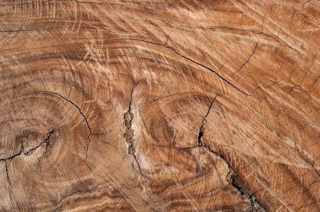 Surface en bois weathered Photo gratuit