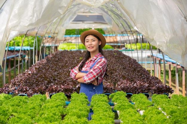 Système hydroponique, planter des légumes et des herbes sans utiliser le sol pour la santé Photo gratuit
