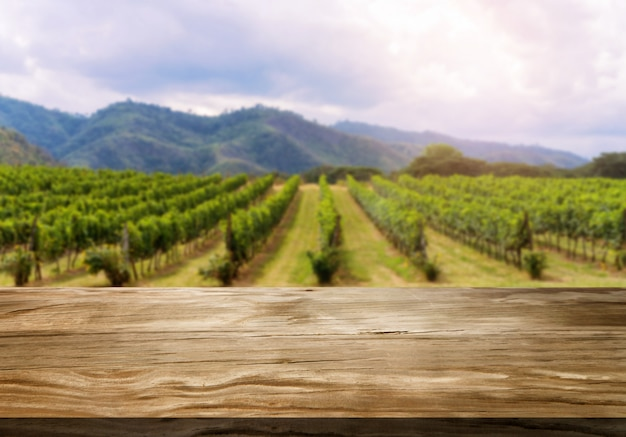 Table en bois dans le paysage de vignoble de printemps vert. Photo Premium