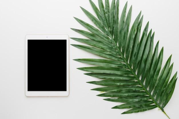 Tablette vierge et feuille d'arbre sur fond clair Photo gratuit