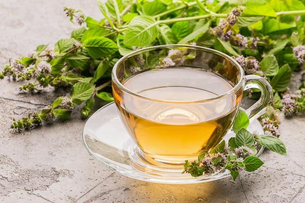 Tasse de boisson au thé avec des feuilles fraîches de mélisse de menthe poivrée Photo Premium