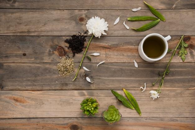 Tasse de café vue de dessus avec des plantes Photo gratuit