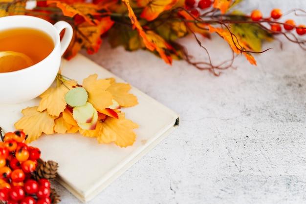 Tasse de thé et feuilles tombées sur la surface claire Photo gratuit