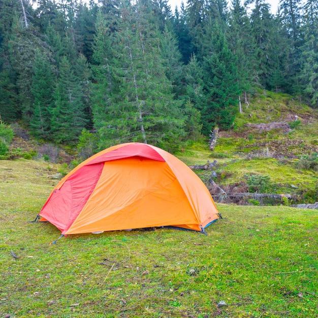 Tente De Camping Orange Dans Une Forêt Verte Photo Premium