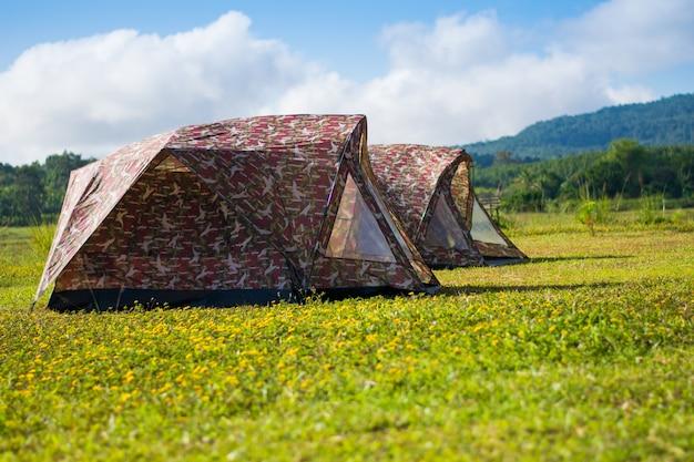 Tente de voyage sur le champ de fleurs jaunes et vue sur la montagne Photo Premium