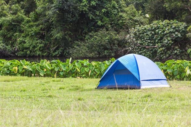Tentes de touristes bleus en forêt Photo Premium