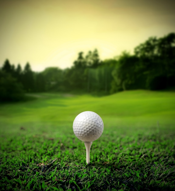Terrain de golf avec une balle Photo Premium