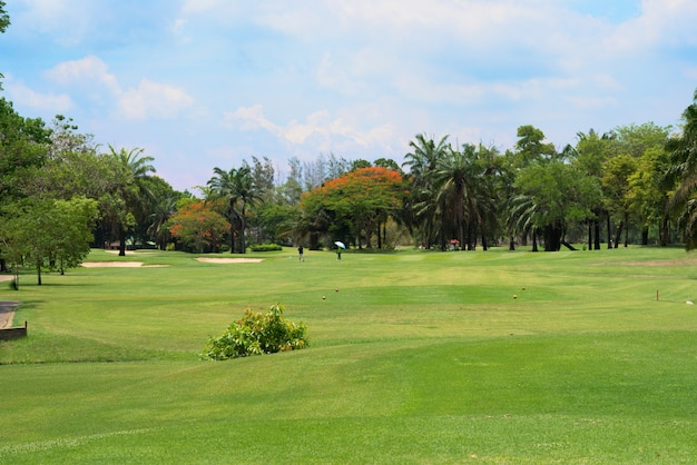 Terrain de golf où le gazon est magnifique Photo Premium