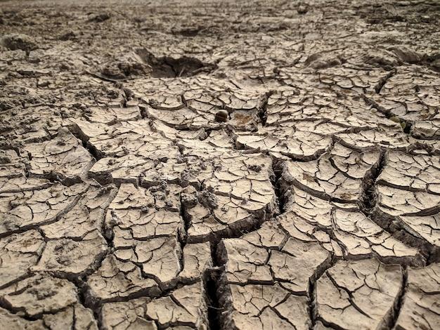Terre fissurée, fond de sol aride Photo Premium