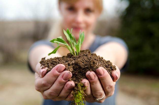 Terre fraîche avec nouvelle petite plante verte pousse dans les mains de la femme Photo Premium