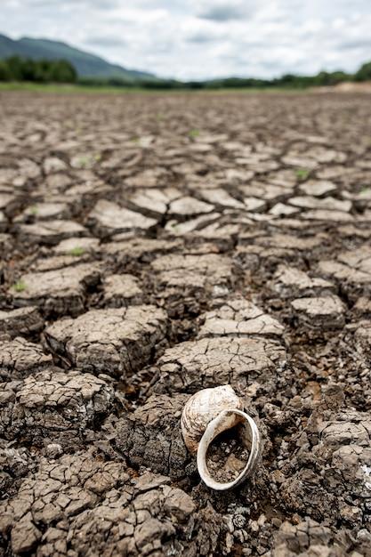 Terre sèche fissurée sans eau Photo Premium