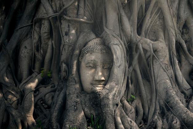 La tête de l'ancienne statue de bouddha en thaïlande Photo Premium