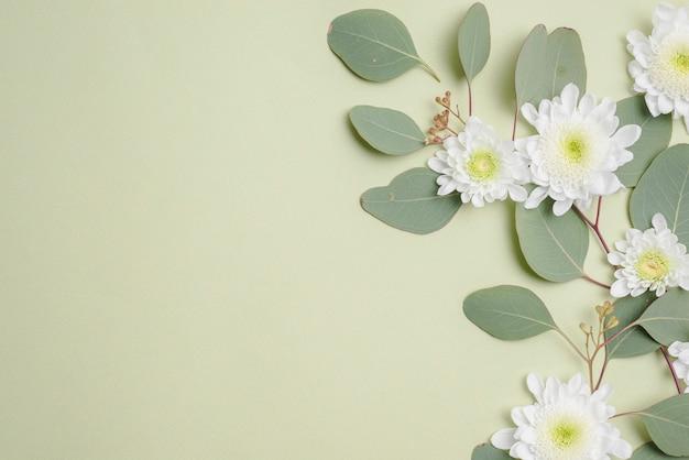 Têtes de fleurs sur les feuilles vertes Photo gratuit