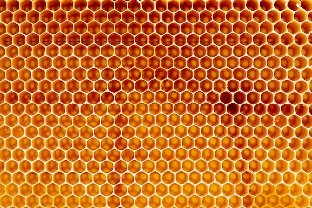 Texture D'arrière-plan Et Motif D'une Section De Nid D'abeilles De Cire D'une Ruche D'abeilles Remplie De Miel Doré Dans Une Vue Plein Cadre Photo Premium