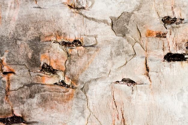 Texture En Bois Ancien Avec Des Trous Photo gratuit