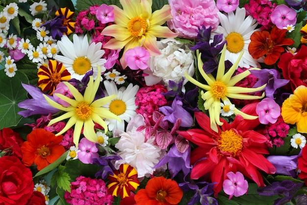 Texture de différentes fleurs, vue de dessus. toile de fond lumineuse florale. Photo Premium