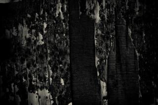 La texture du bois grunge, noir   Télécharger des Photos gratuitement