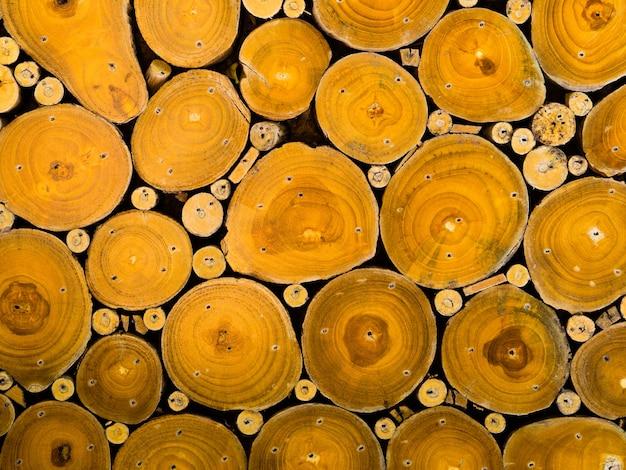 Texture du bois sans soudure de tronc d'arbre coupé. Photo Premium