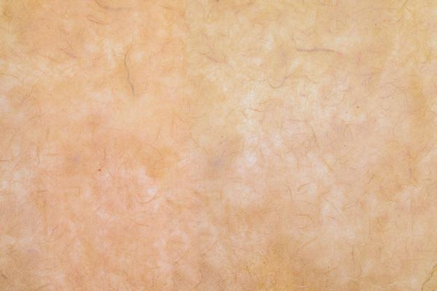 Texture Du Papier Faite à La Main Avec Des Fibres Organiques Visibles Photo Premium