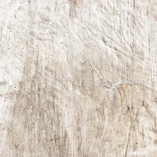 Texture du tronc coupé Photo Premium