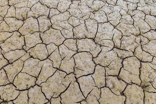 Texture de fond de terre fissurée Photo Premium