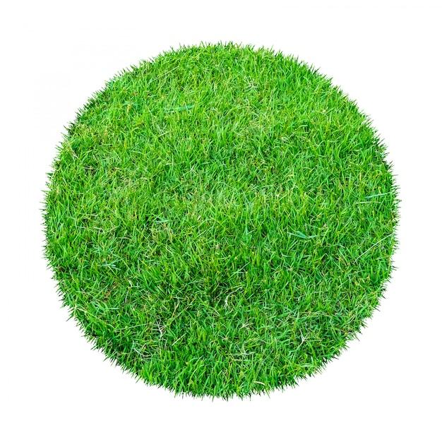 Texture d'herbe verte pour le fond. Photo Premium