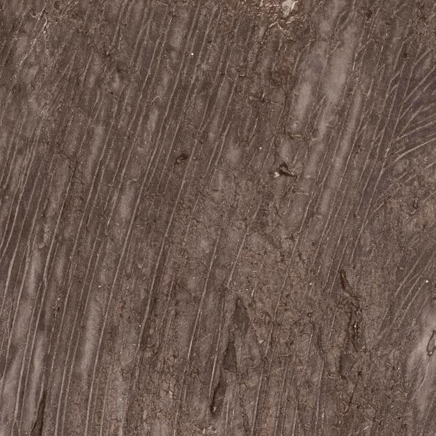 Texture Marron Monochromatique Vide Photo gratuit