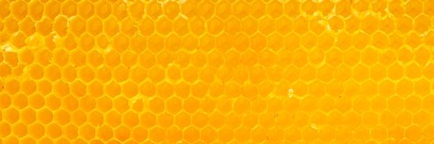 Texture En Nid D'abeille Jaune Photo gratuit
