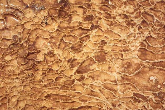 Texture orange sur une source minérale dans les montagnes, dépôts de pierre Photo Premium