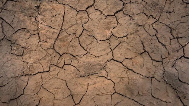 Texture de sol fissuré Photo Premium
