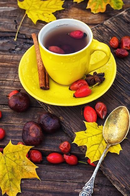 Thé aux fruits de rose canine Photo Premium