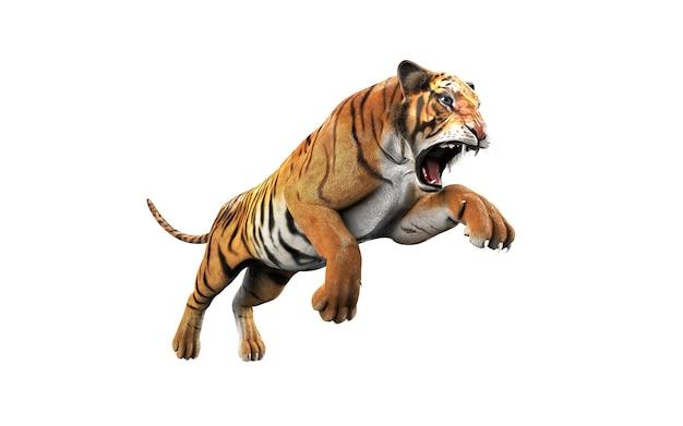 Tigre du bengale dangereux isolé sur fond blanc avec un tracé de détourage Photo Premium