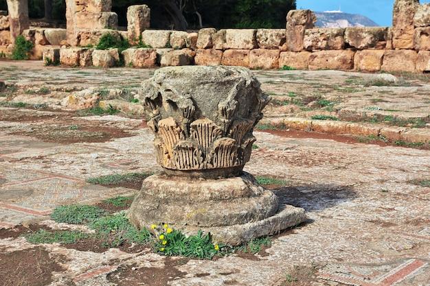 Tipaza Ruines Romaines De Pierre Et De Sable En Algérie, Afrique Photo Premium